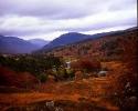 Autumn Colours Glen Lyon